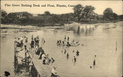 Pine Grove Bathing Dock and Float
