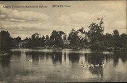 Lake at the Connecticut Agricultural College