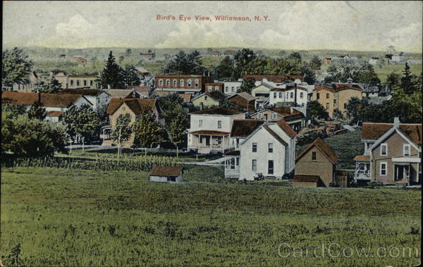 Bird's Eye View of Town Williamson New York