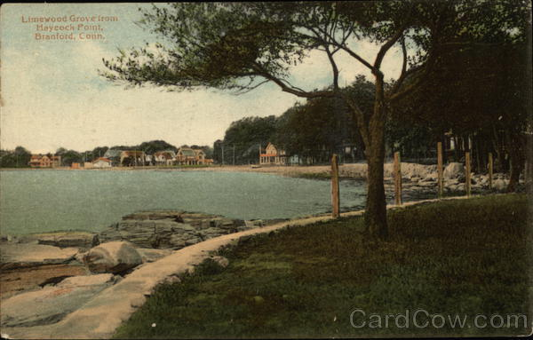 Limewood Grove from Maycock Point Branford Connecticut