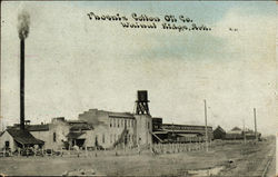 Phoenix Cotton Oil Company