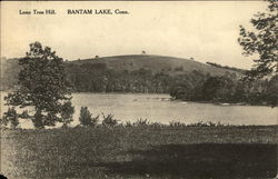 Scenic View of Lone Tree Hill, Bantam Lake