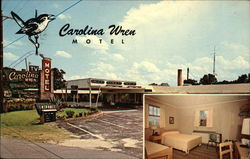 Carolina Wren Motel