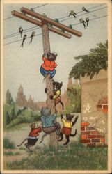 Cats Climbing Telephone Pole
