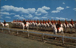White Horse Patrol at Drill Grounds