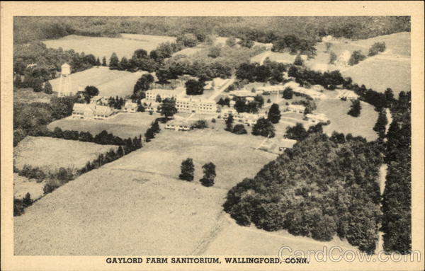 Aerial View of Gaylord Farm Sanitorium Wallingford Connecticut
