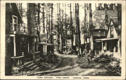 Camp Ground in Pine Grove Postcard