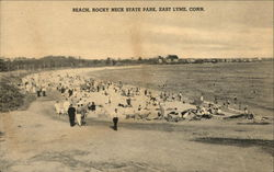 Beach at Rocky Neck State Park