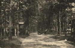 Wooded View of The Grove