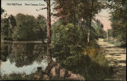 Old Mill Pond