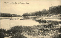 The Cove, Pine Grove