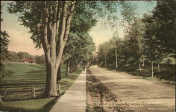 Greenwoods Road (West)