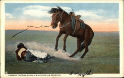 Cowboy thrown from a Bucking Bronco