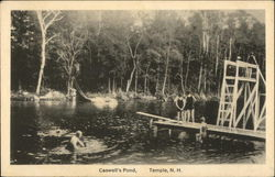Caswell's Pond