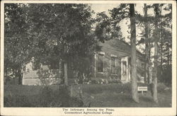 Connecticut Agricultural College - Infirmary Among the Pines