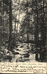 Old Furnace Brook