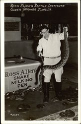 Ross Allen's Reptile Institute