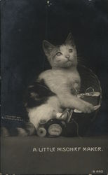 Kitten in Sewing Basket