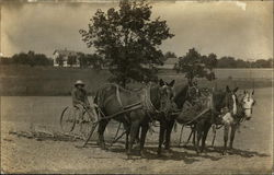 Farmer on Horse-Pulled Plow
