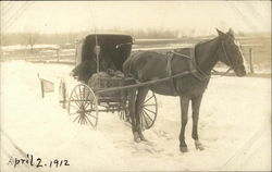 Snow, Horse-drawn Carriage, Person sitting in Carriage