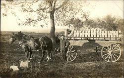 Horse Drawn Apple Wagon