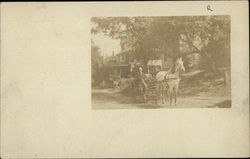 Man Sitting in Horse and Carriage on Neighborhood Street