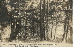 Lovers' Lane, Barkhamsted Road