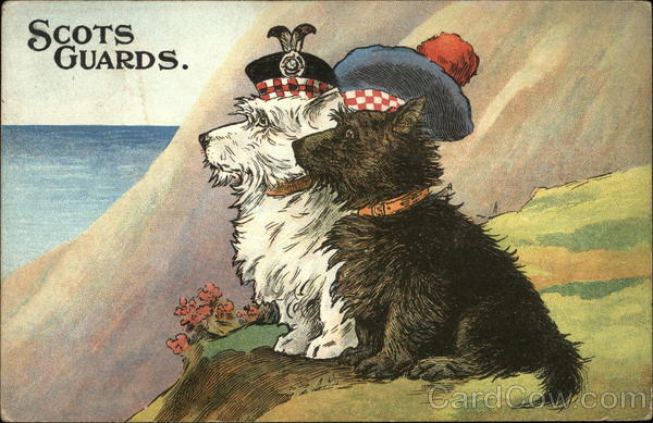 Scots Guards.: Two Scottie Dogs with Hats