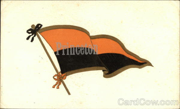 Princeton University Flag New Jersey School Pennants
