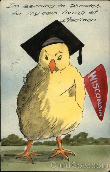 Hand Drawn University of Wisconsin Cartoon Chicken with Pennant