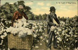 Painting Man, woman and child picking cotton - In the Land of King Cotton