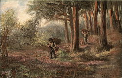 Gathering Wood in the Forest