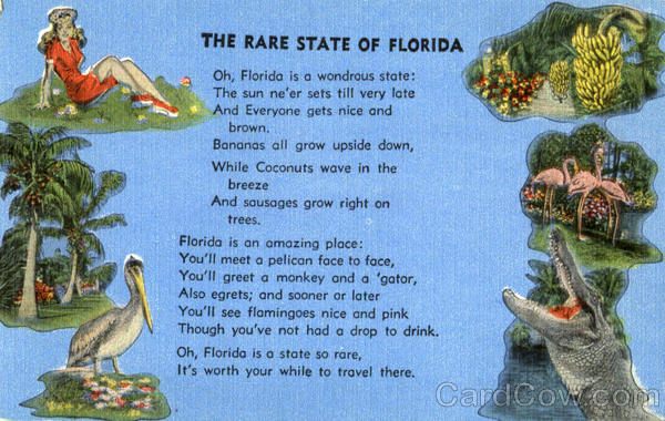 The Rare State Of Florida Poems