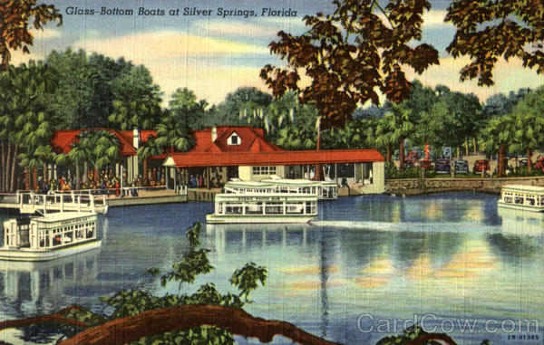 Glass - Bottom Boats At Silver Springs Florida