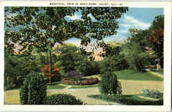 Beautiful View In West Park Postcard