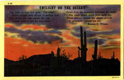 Twilight On The Desert