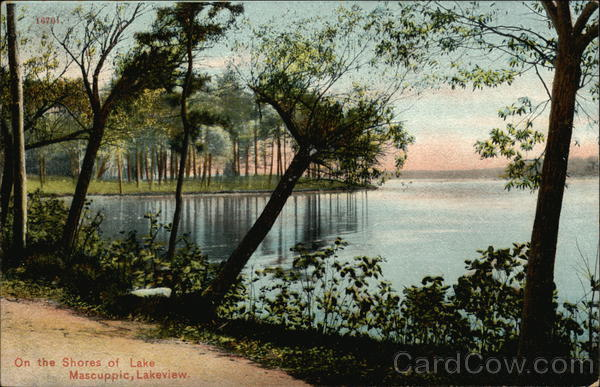 On the Shores of Lake Mascuppic, Lakeview Tyngsborough Massachusetts