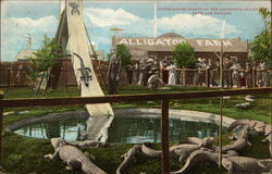 Entertaining Guests at the California Alligator Farm