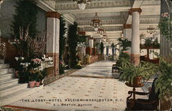 The Lobby, Hotel Raleigh