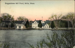 Boggestowe Mill Pond