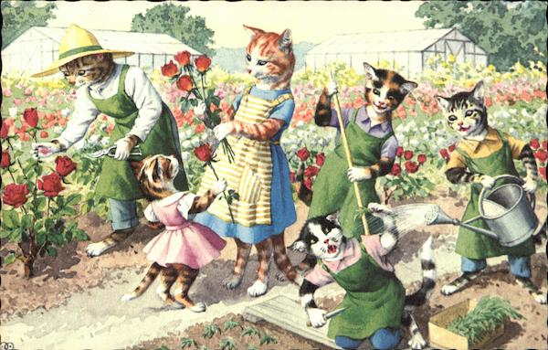 Cats tending to garden postcard for Tending to the garden