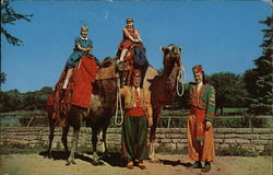 Camel Rides in Vilas Park