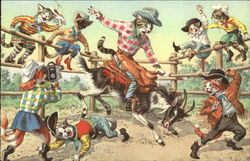 Cats In a Rodeo