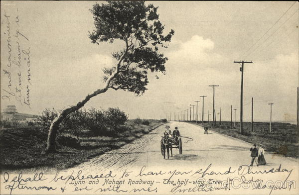 Lynn and Nahant Roadway - The Halfway Tree Massachusetts