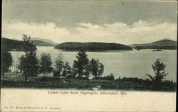 Lower Lake from Algonquin Postcard