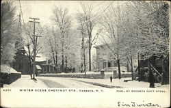 Chestnut Street - Winter Scene