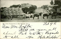 Cotton Transportation by Road