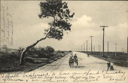 Lynn and Nahant Roadway - The Halfway Tree
