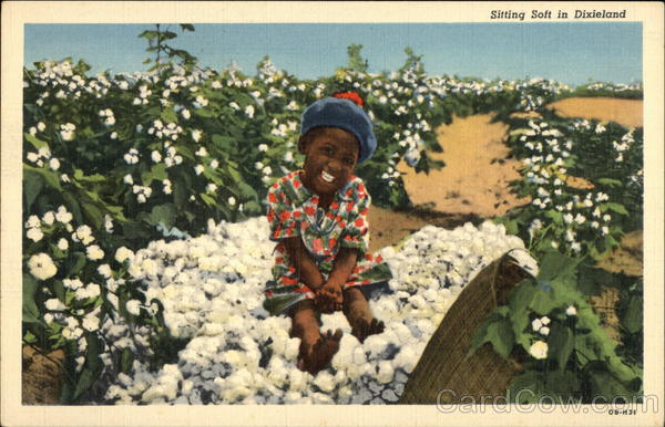 Black Child Sitting on Cotton Bale Black Americana