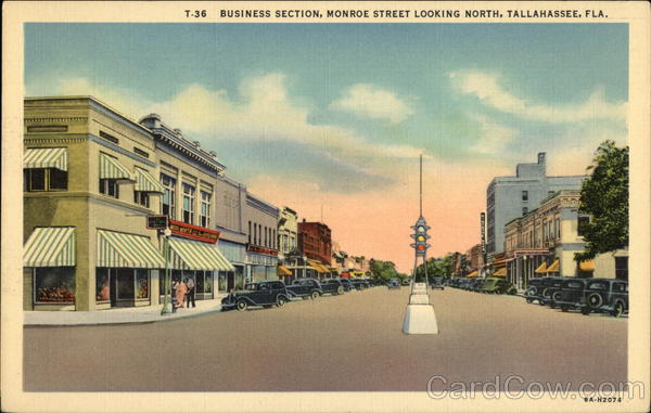 Monroe Street Looking North Tallahassee Florida